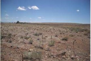 Vacant Land in Conejos County, CO