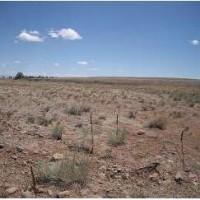 More Vacant Land in Conejos County, Colorado