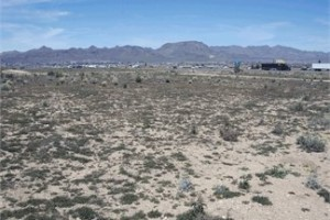 Vacant Land in Mohave County, AZ on Sage Street