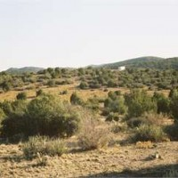 Vacant Land in Mohave County, Arizona - Greater Kingman Industrial Park