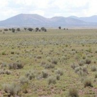 Apache County Vacant